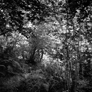 El valle invisible 08